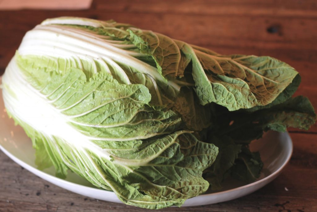 Large head of lettuce placed on a white plate.