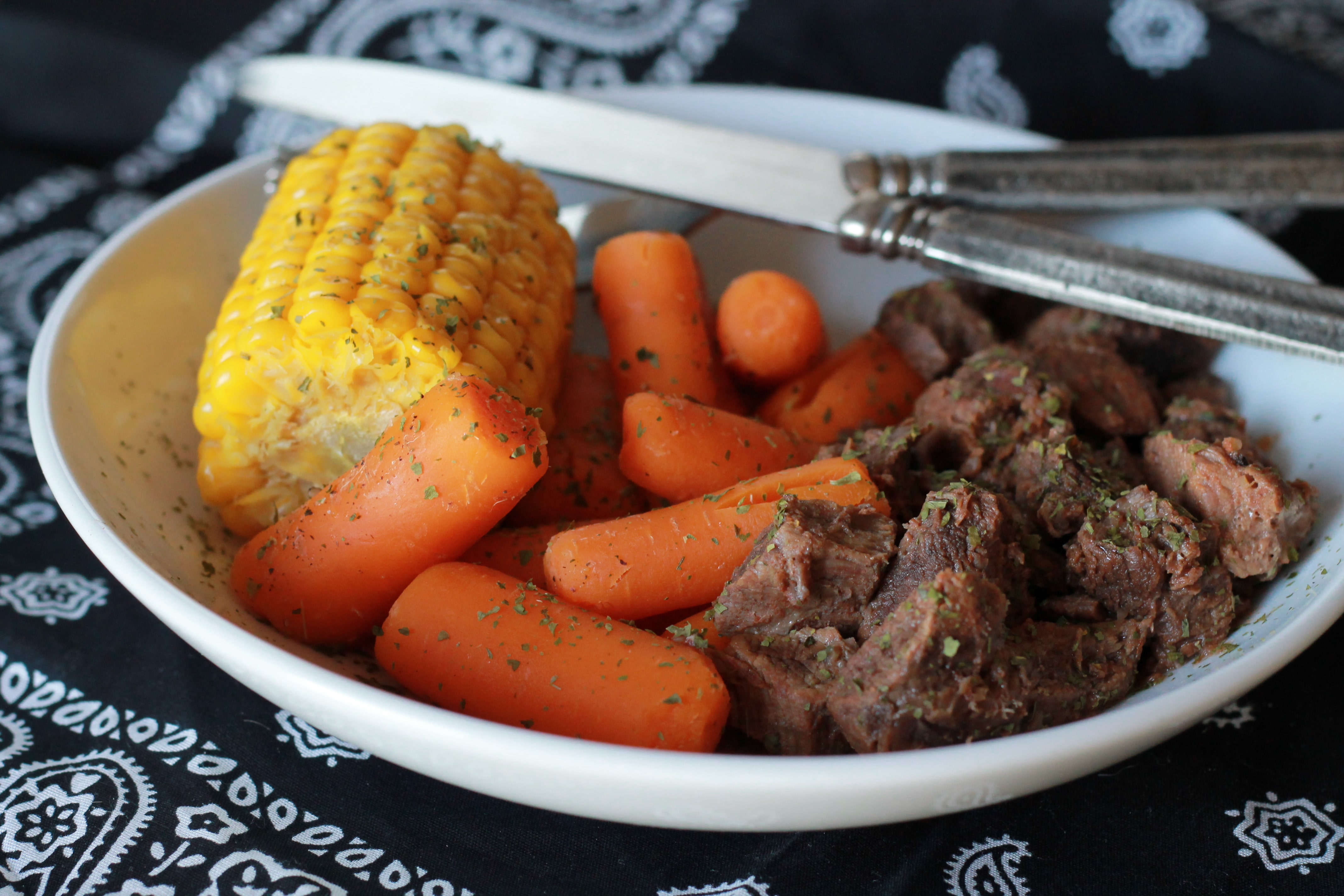 Slow Cooked Tangy Beef