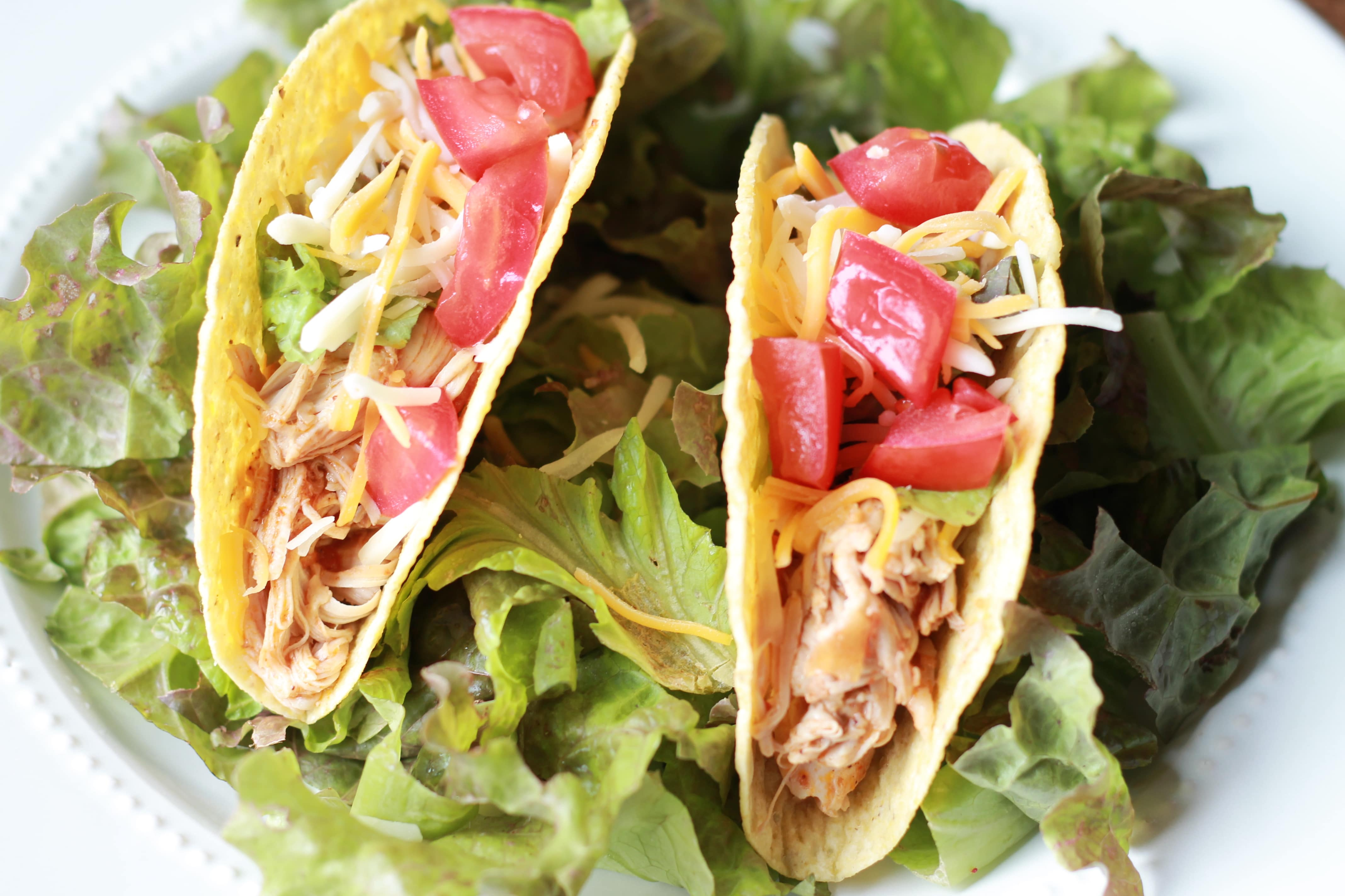 Slow Cook Enchilada Chicken Tacos
