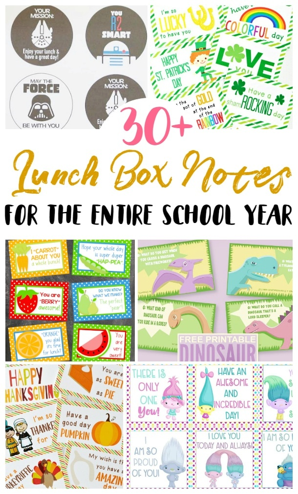 Kids\' Lunch Notes Roundup - 5 Dinners In 1 Hour